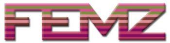 FEMZ workshops en citygames Eindhoven