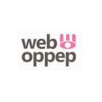 Internet Marketing bureau Web Oppep