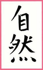 Taji Ziran School voor Taiji en Qigong