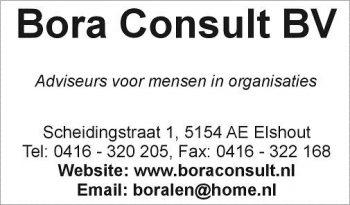 Bora consult bv