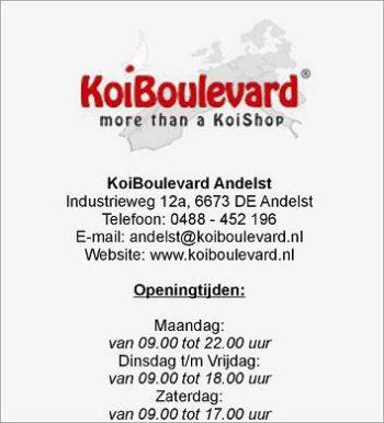 Koi boulevard