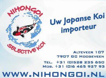 Nihongoi selective koi