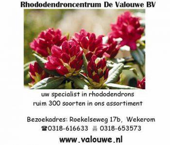 Rhododendroncentrum de valouwe
