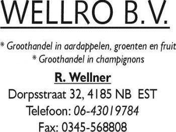Wellro bv